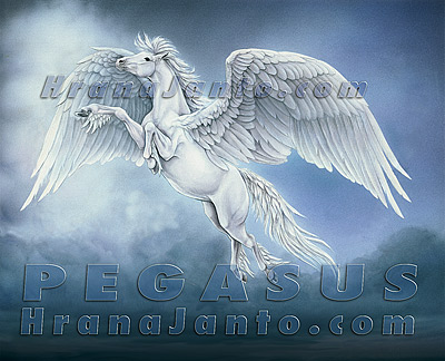 Pegasus and Medusa